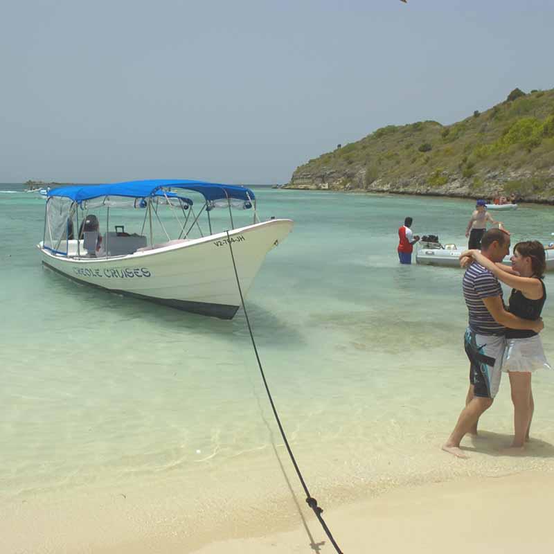 Tours to Great Bird Island